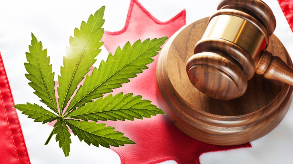 The Legalization of Marijuana…an HR Perspective